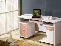电脑桌 (3)