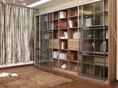 书柜 (5)